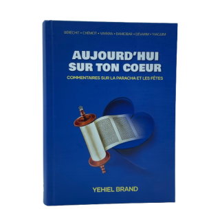 AUJOURD'HUI SUR TON COEUR - YEHIEL BRAND
